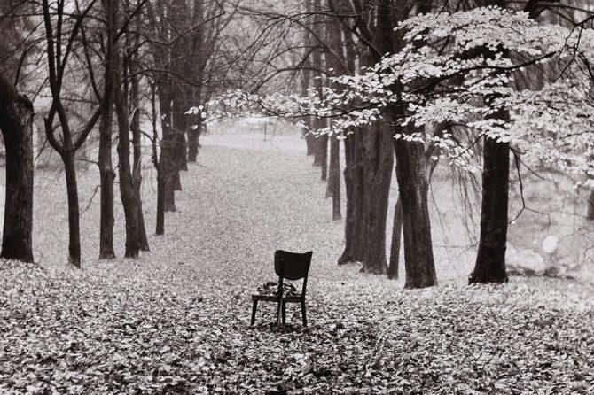 Jesień to czas wielkiego grzybobrania a więc: las, kolory, cisza, uważność, mindfulness.