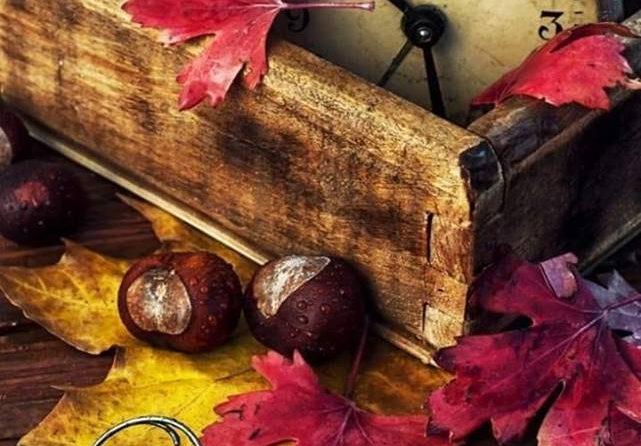 Taktowna, wspaniale wymalowana, pachnąca, ubrana z klasą, piękna, taka jest jesień.